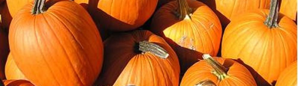 Pumpkins Etc.